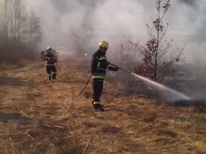Пожари изпепелиха десетки декари през последното денонощие